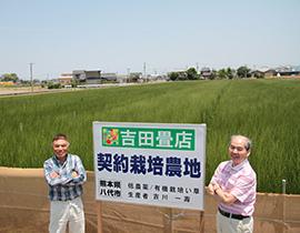 熊本県八代市の契約農家さん